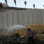 Grupos de árabes inician el fuego, esperan escondidos la llegada de bomberos y los atacan