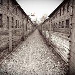 Los aliados sabían del Holocausto en 1942