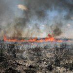 Daño ecológico: Con cometas incendiarias los palestinos dañan una reserva natural en Israel
