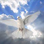 Opinión: El peligro de hablar de paz